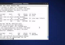 Mount NTFS on Linux